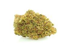 CBD Flower of Mango Haze legal Weed UK