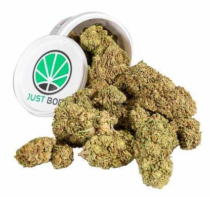 Orange Bud Box Weed