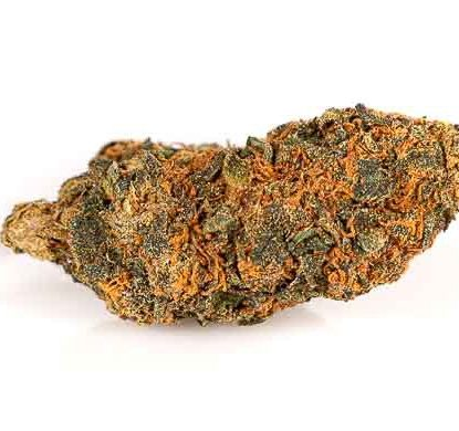 Orange Bud CBD flower of legal cannabis