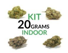 Kit 20 grams Indoor Justbob.shop