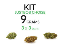 kit-test-marijuana-thc-cannabis-cbd-flower-9-grams