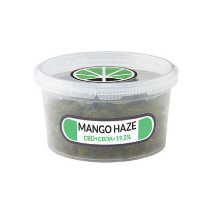 Box of Mango Haze CBD Buds legal Weed