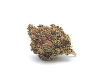 mango-haze-weed-cbd-flower-uk