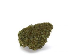 master-kush-weed-cbd-flower-uk