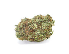 strawberry-banana-weed-cbd-flower-uk-weed-shop