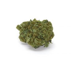 CBD Flower | Weed Shop UK | Best Bud of Legal Weed | Just Bob