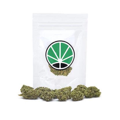 amnesia-haze-seeds-amnesia-weed-cbd-flower