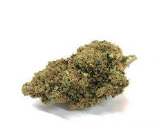 bubblegum-haze-kush-weed-cbd-flower
