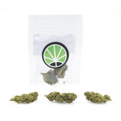 melon-kush-weed-marijuana-shop