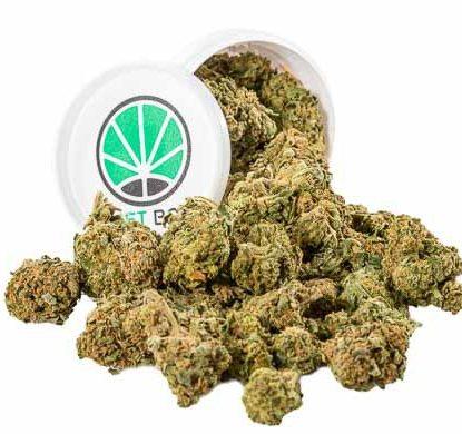 Gorilla Glue Box Weed