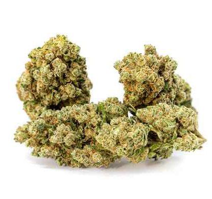gorilla-glue-legal-cannabis-cbd-uk-flower