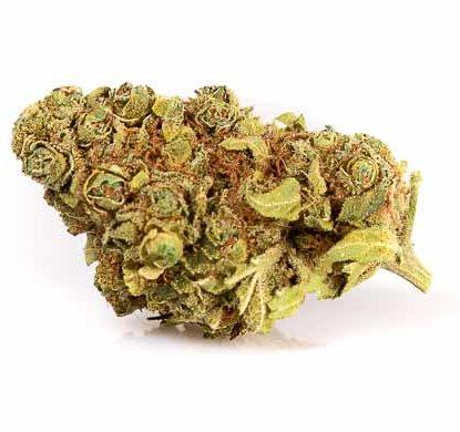 Gorilla Glue Weed CBD