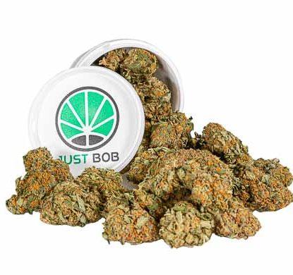 California Haze Box Weed