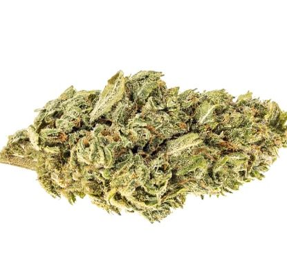 Bud of California Haze CBD weed
