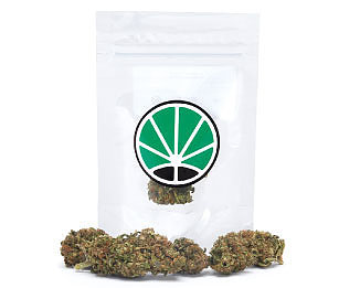 california-haze-weed-seeds