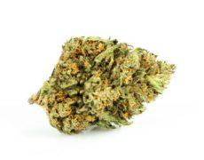 Legal Cannabis Sweet Berry