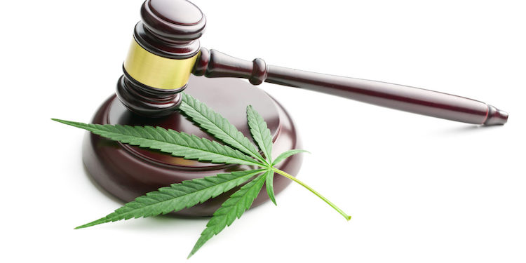 The Legal Status of CBD