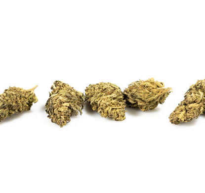 Strains of Do Si Dos CBD buds