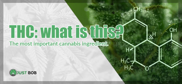 THC: what is tetrahydrocannabinol?