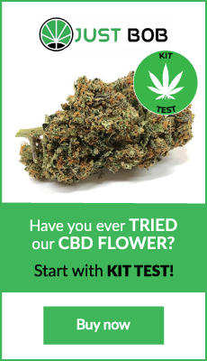 cbd-flower-uk-kit-marijuana-cbd-cannabis