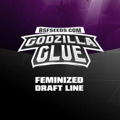 godzilla-glue-marijuana-feminized-seeds