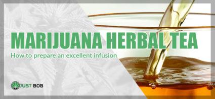 marijuana herbal tea infusion