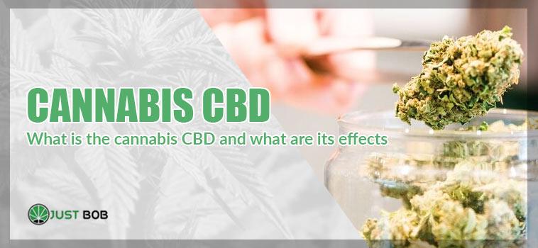 what is cannabis cbd