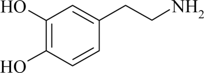 the dopamine structure from wikipedia