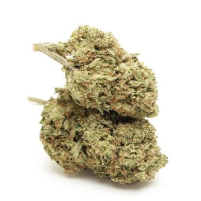 do-si-dos-cbd-canamo-cannabis-cbd-marihuana-cbd