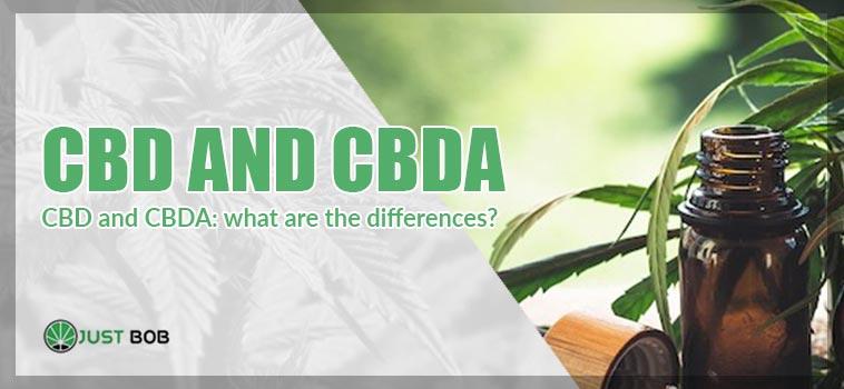cbd and cbda cover image