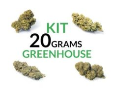 Kit 20 Grams Greenhouse justbob.shop