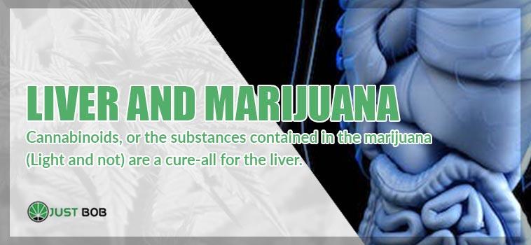 Liver and marijuana