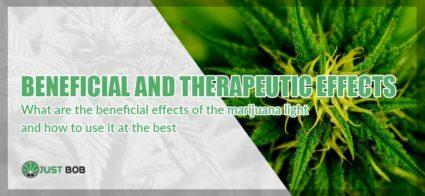 marijuana therapeutic effects cover image