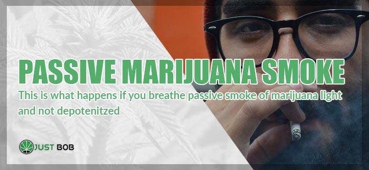 passive marijuana smoke