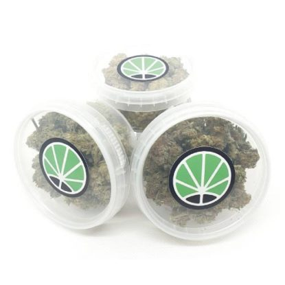 marijuana-shop-christmas