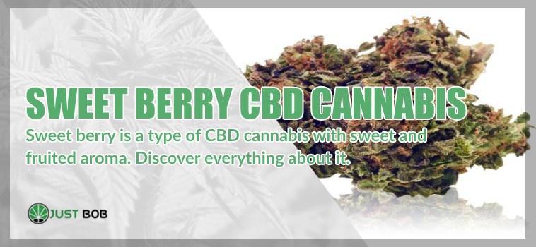 Sweet Berry: a fruited CBD Cannabis