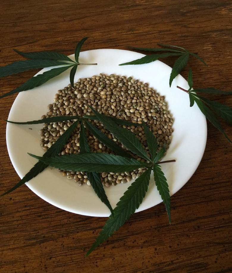 cannabis seeds of northern lights cbd weed