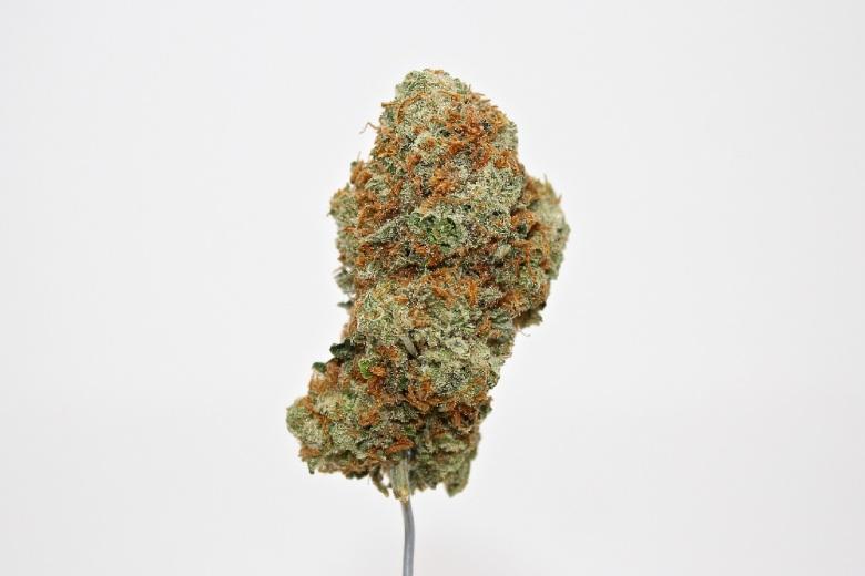 effects of cbd cannabis