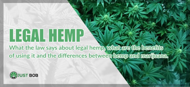 legal hemp