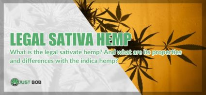 properties and differences between Legal sativa hemp and indica hemp