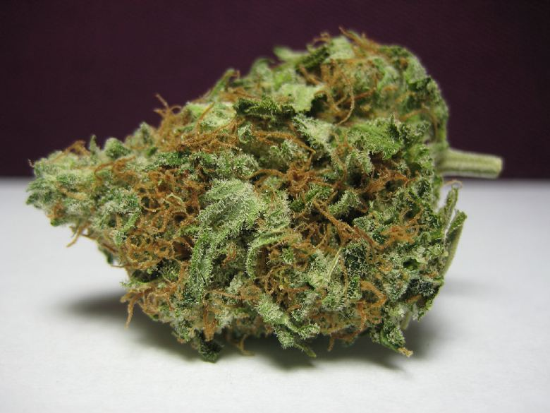 white widow light bud