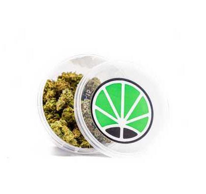 Small Buds Marihuana Weed Indoor
