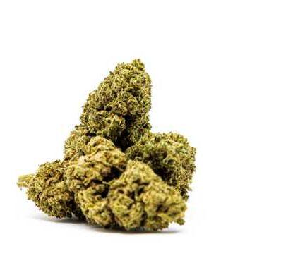 CBD Buds of Master Kush legal Weed UK