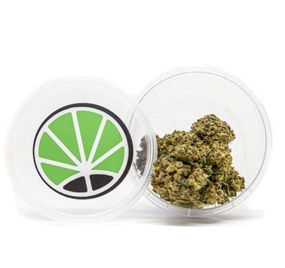 Box of CBD Gorilla Glue Weed