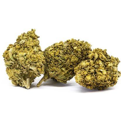 CBD Buds of Lemon Cheese legal cannabis