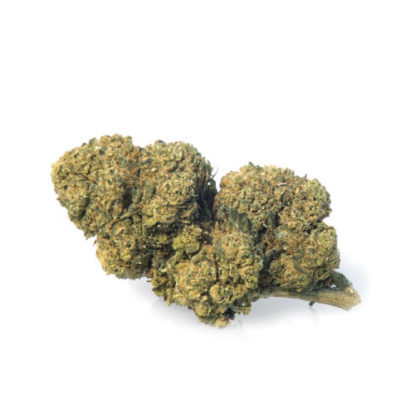 CBD Flower of Mango Haze legal Weed UK
