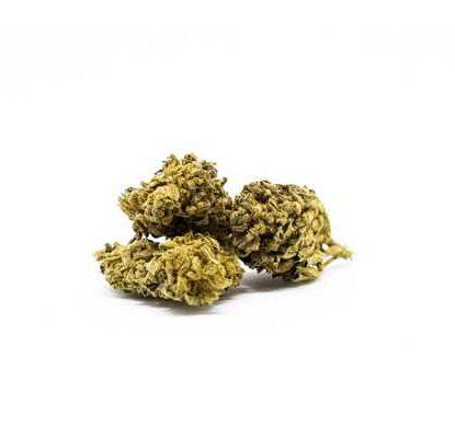 melon kush cannabis legal cbd