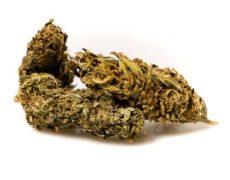 Cannabis-cbd-outdoor-buds-mix