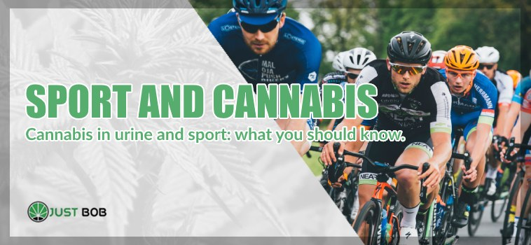 Sport and cbd Cannabis