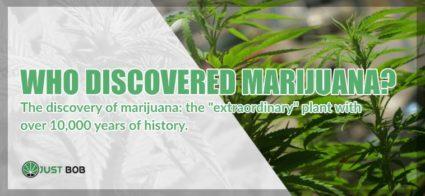 Who Discovered Marijuana light